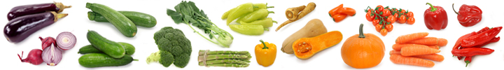 barevna zelenina salát