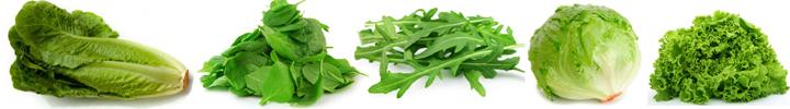 listova zelenina salát