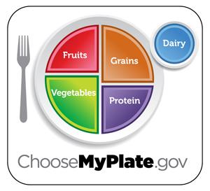 potravinová pyramida talíř